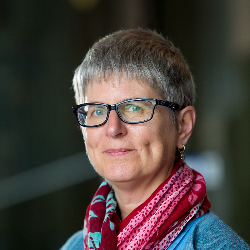 Professor Carol Harvey